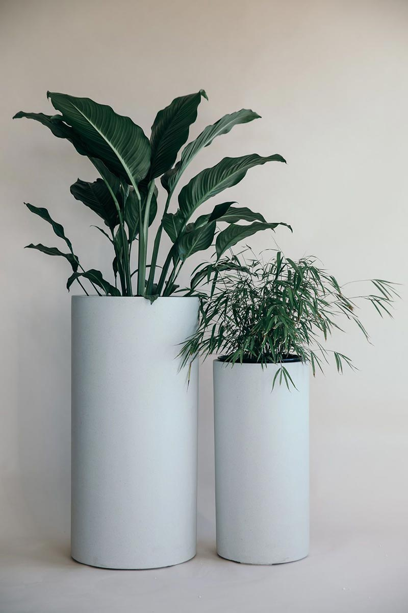 Bianca Tall Cigar Planter Pot from The Green Room