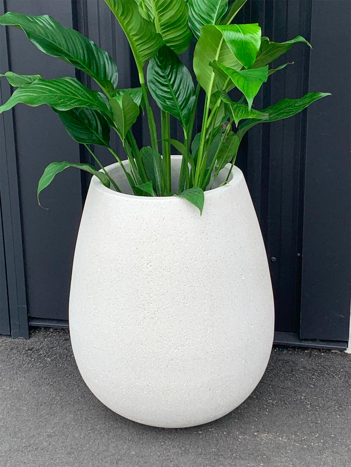 Whitestone Sagger Planter pot in white from The Green Room