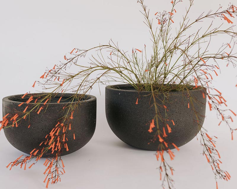 Aspiring Planter Bowls in black available from The Green Room
