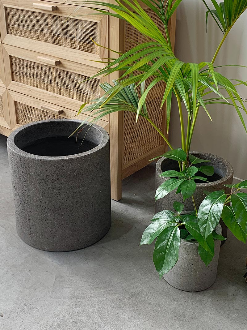 Medium sized Riverstone Cylinder Planter in Grey with planted cacti from The Green Room