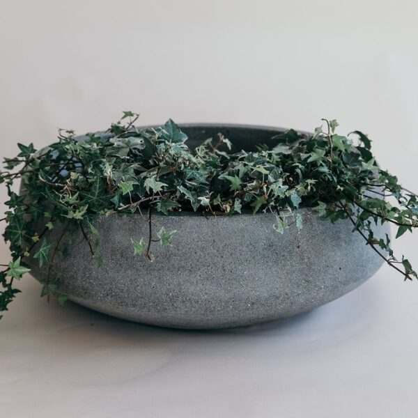 Riverstone Platter Planter in grey colour from The Green Room