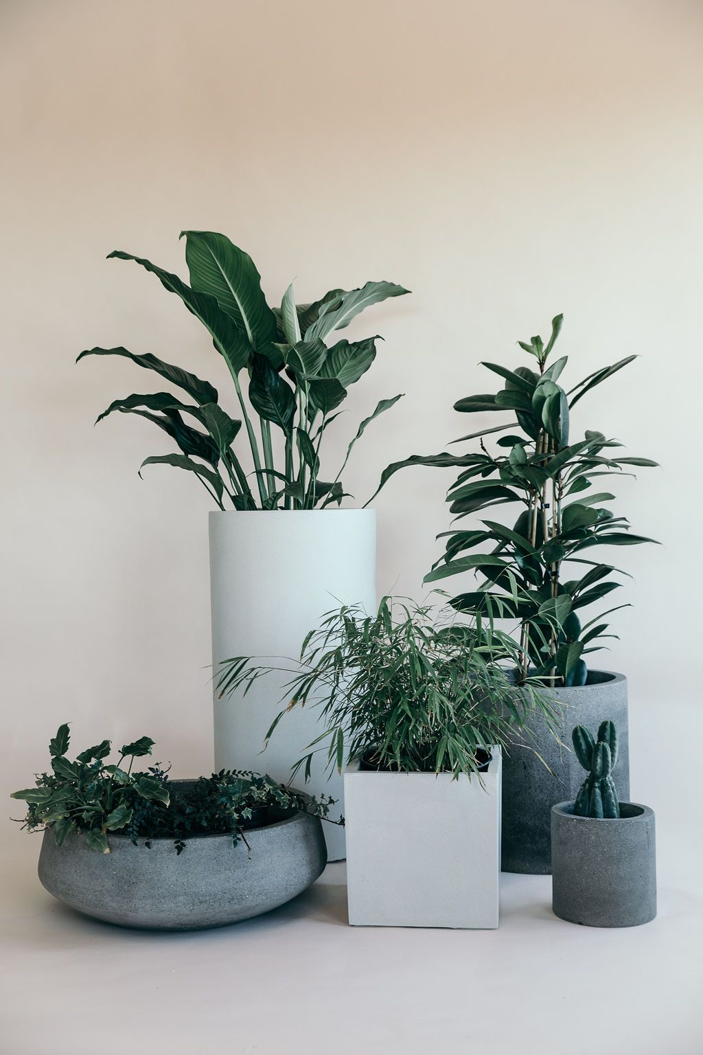 Riverstone Platter Planter - variety of different sized pots - available to hire or buy from The Green Room