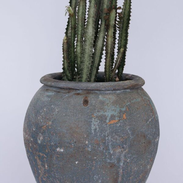 Verdigris water jar in small size with planted cacti